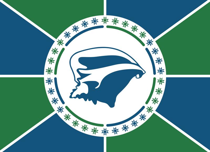 drapeau martinique